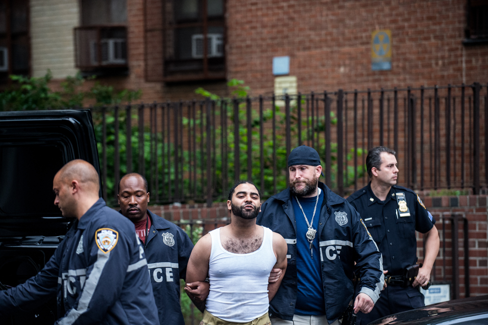 Members of the NYPD raid the Manhattanville Houses and the Grant Houses in West Harlem early on the morning of June 4, 2014. A total of 40 suspects were arrested as part of a massive 145-count indictment of 103 people in a range of crimes, including murder, 19 shootings, gang assaults, beatings and conspiracy. Police apprehend a suspect outside the Grant Houses.